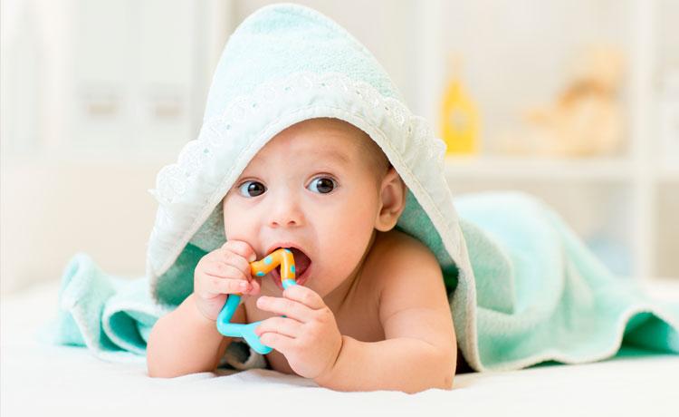 ¿Cuándo empezarán a salir los primeros dientes a mi bebé?